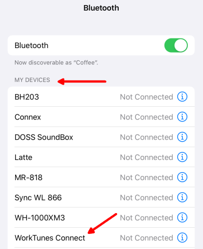 iOS-Bluetooth Paired Devices